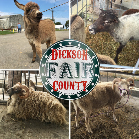 Dickson County Fair