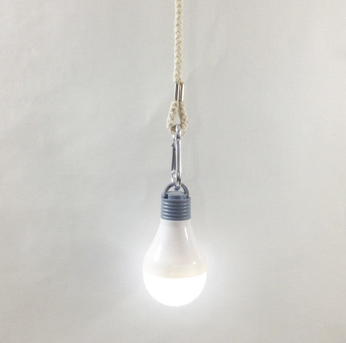 LED, Waterproof, Hanging Bulb with Carabiner