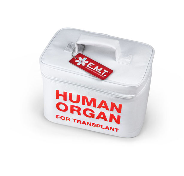 Human Organ Insulated Lunch Bag