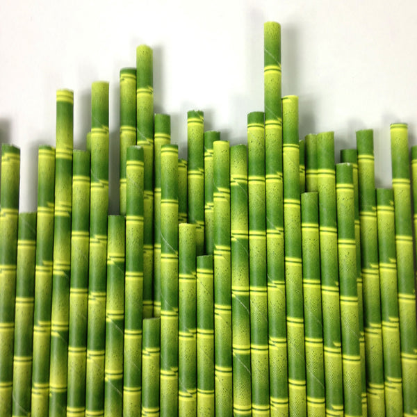 "Paper ""Bamboo"" Straws - 12 per package"