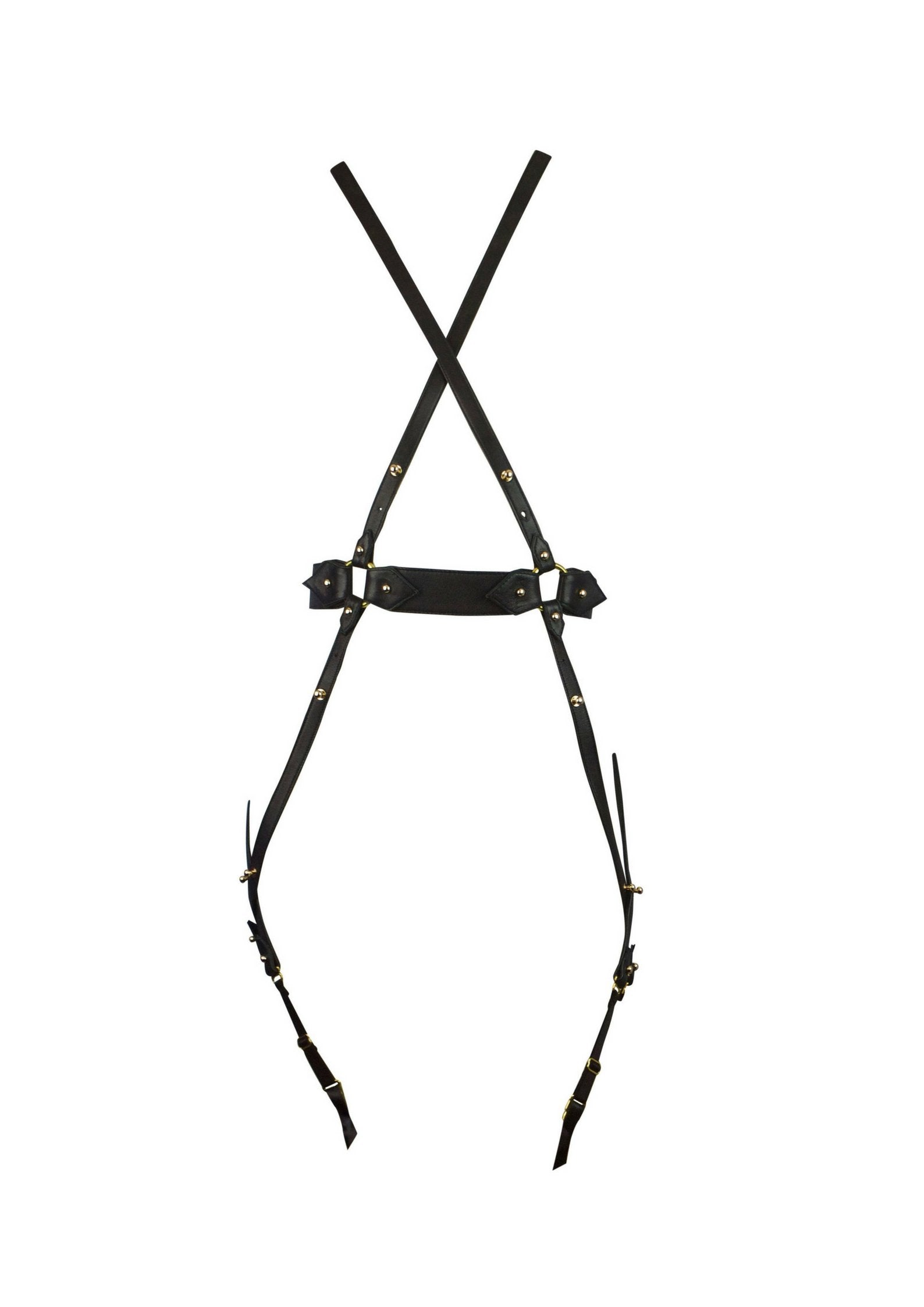 Lola 'n' Leather harness - Available now