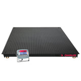 Economical Painted Steel Floor Scales