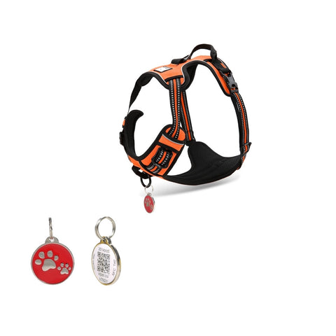 Pet TouchiD Dog harness bundle