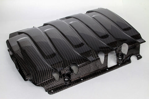 Carbon Fiber Central Intake Cover