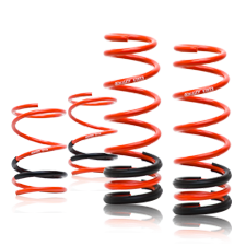 Swift Sport Springs Mitsubishi Evo 8/9 2003-2007