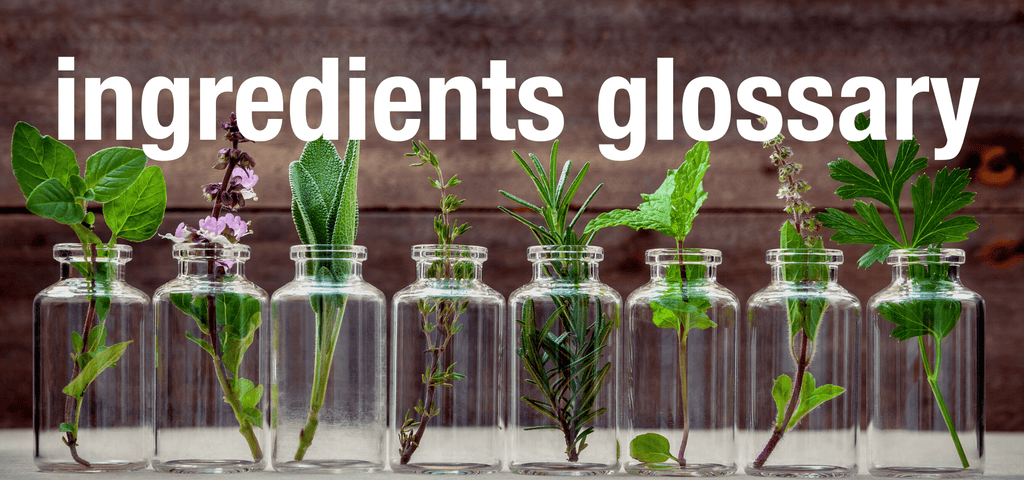 ingredients glossary - 8 clear glass bottles with various herbs
