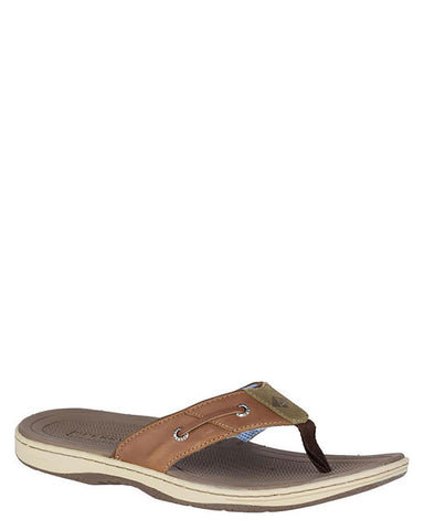 Mens Baitfish Thong Flip-Flops - Tan