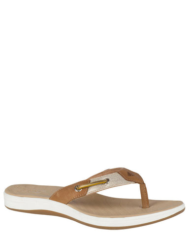 Women's Seabrook Surf Sandals