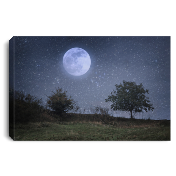 Beautiful Moonlight Canvas