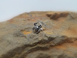 Spider Cartilage 16ga Tragus Helix Earring Body Jewelry - BodyDazzle - 1