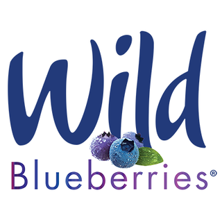 Wild Maine Blueberry Pies