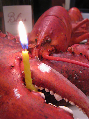 Birthday Lobster