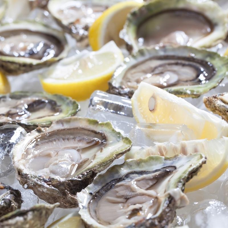 Buy-Oysters