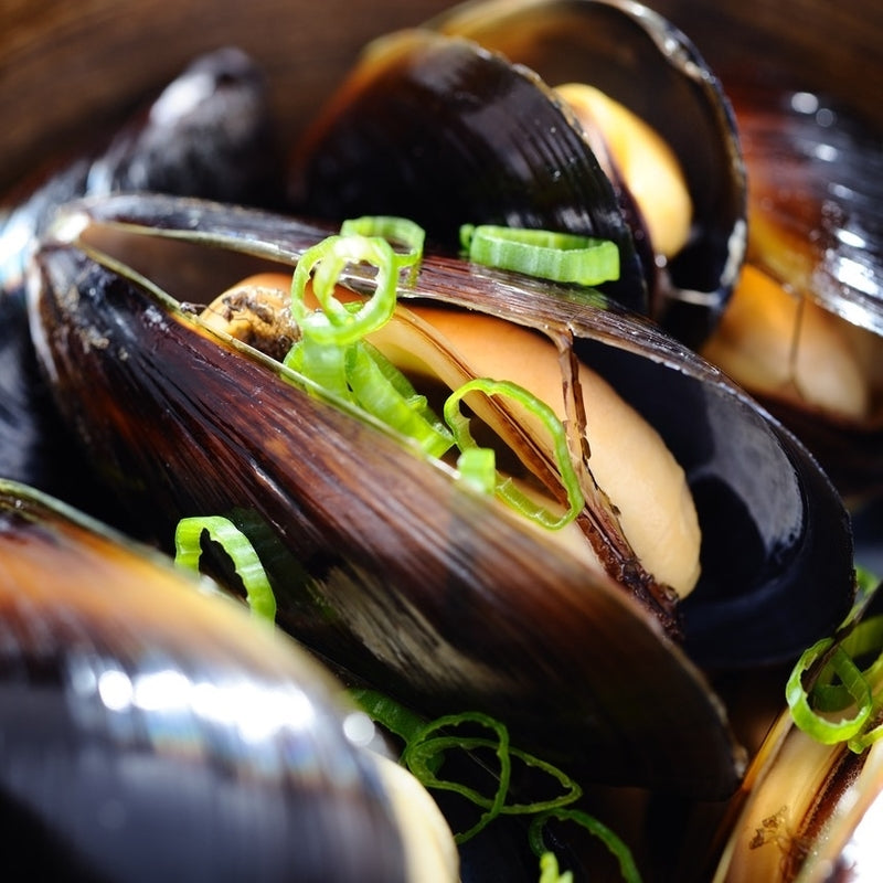 Shellfish Lovers | Mussels | Clams | Oysters | Bluepoint Oysters | Clams