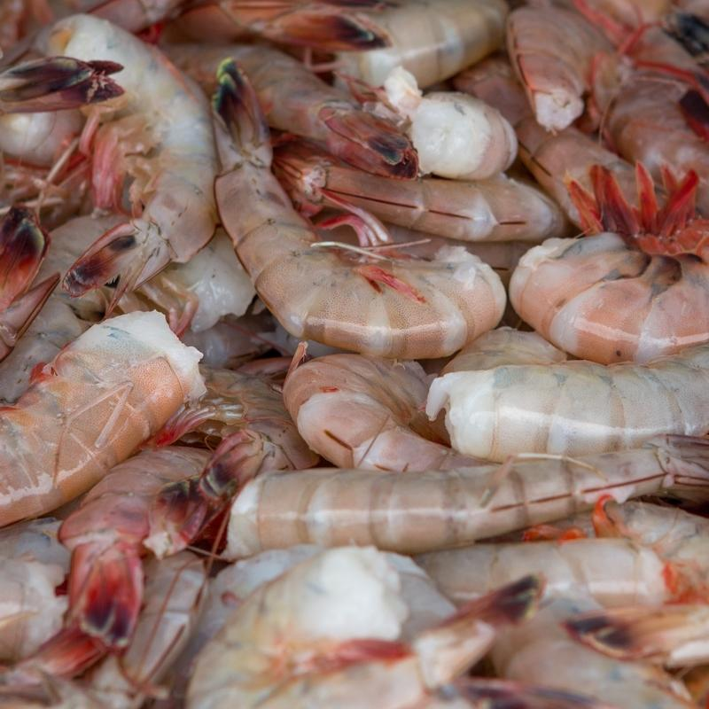 Buy Shrimp