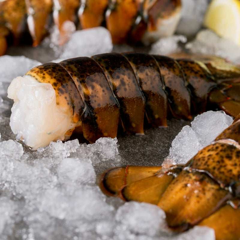 Maine Lobster Tails 4-5 ounce
