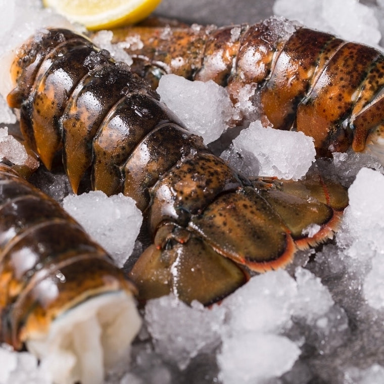 Maine Lobster Tails 7-8 ounce