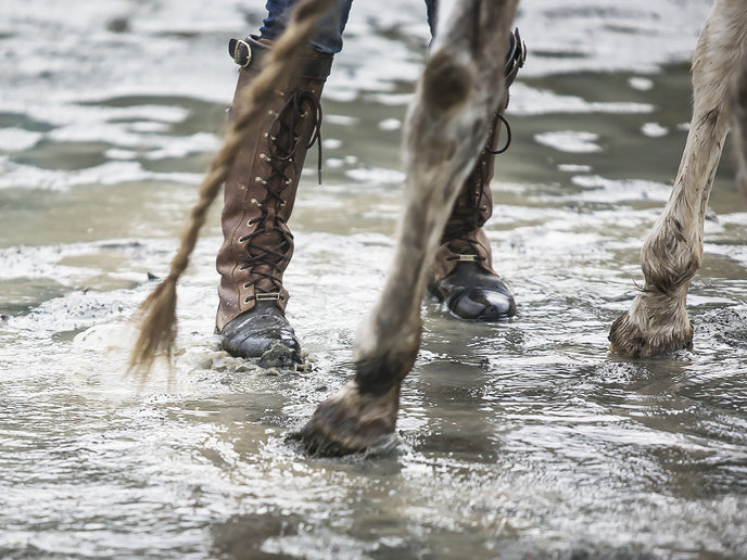 Horse Paddock Drainage: Stability Is More Important than Permeability