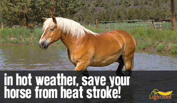 Heat Stroke: Prevention, Detection, and Treatment