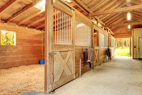 Optimize Your Horse's Health with These Barn Safety Tips