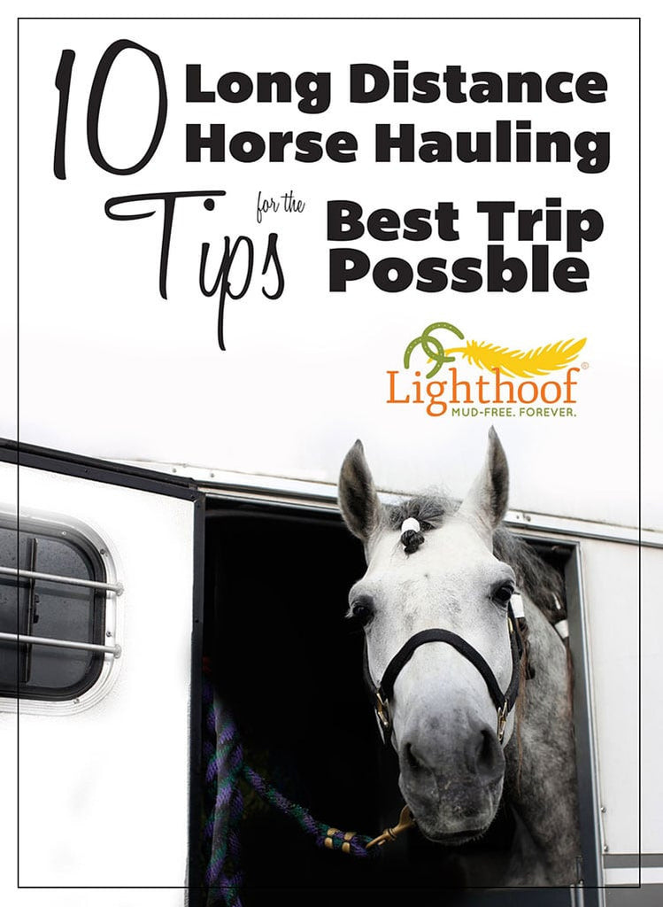10 Long Distance Horse Hauling Tips for the Best Possible Trip