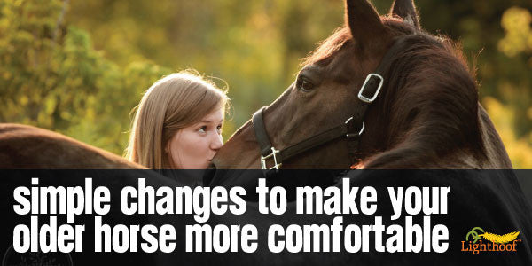 Is Your Senior Horse Arthritic? How to Maximize Her Comfort with a Few Simple Changes