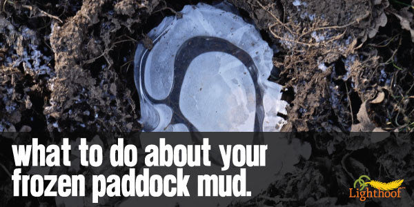 Treacherous Mud Peaks: The Pitfalls of Frozen Horse Paddock Mud