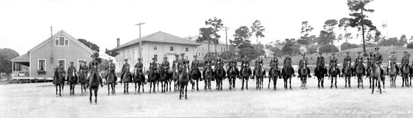 US Cavalry mounts lined up for training.