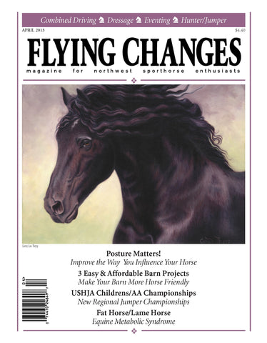 Flying Changes cover
