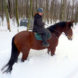 CJ Millar from New Jersey is rehabbing her horses thanks to Lighthoof.