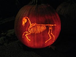 Spooky Skeleton Horse Pumpkin Carving for Halloween