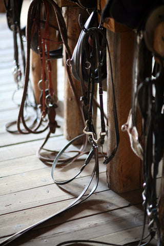tack room cleaning for spring barn project
