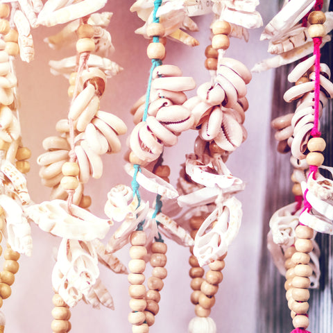 Many different type of shells hanging from threads