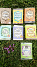 Knotty Boy All Purpose Shampoo Bar Collection
