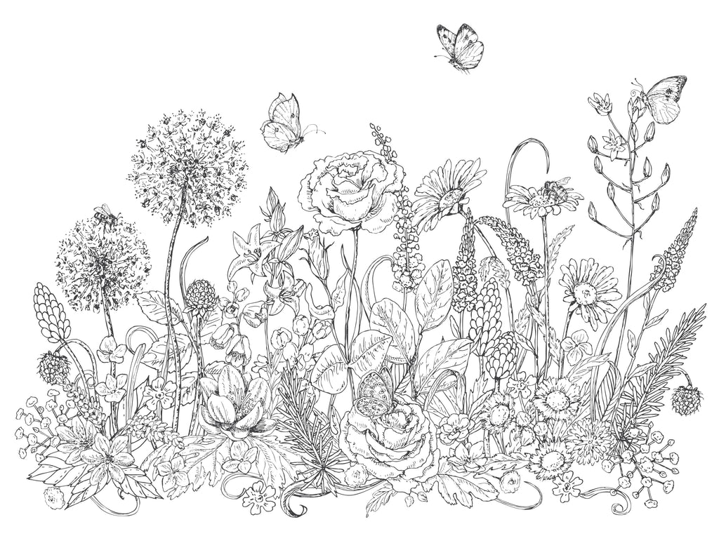 Pollinators and Wildflowers Coloring Page