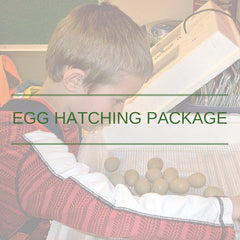 Egg hatching package