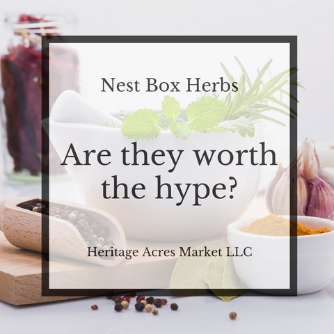 Nest Box Herbs: Are They Worth The Hype?