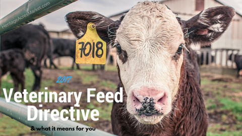 2017 Vet Feed Directive Law Changes
