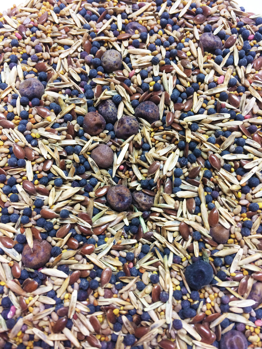 Essential Nutrients Chicken Fodder Seed Blend - Heritage Acres Market LLC