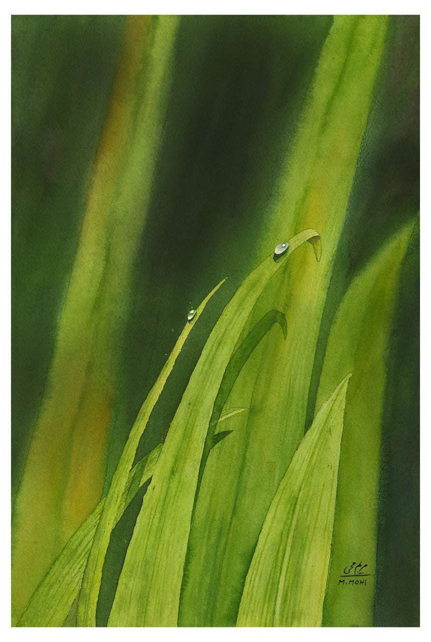 Dew Drop Water Color Painting