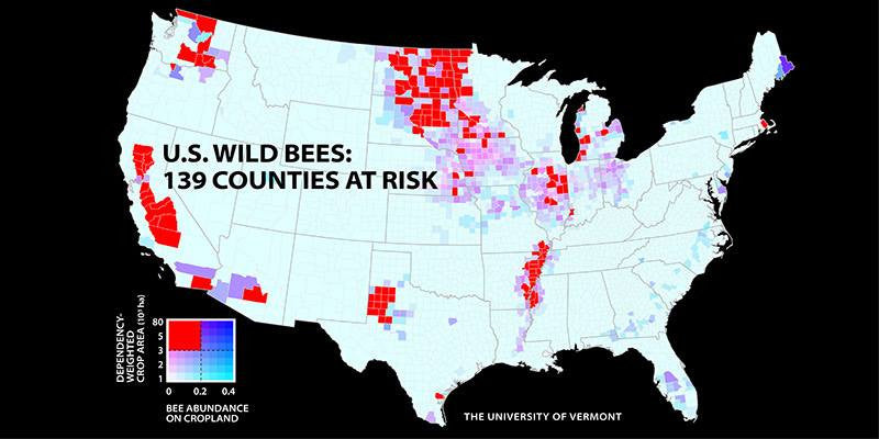 Mapping Model Estimating Wild Bee Populations