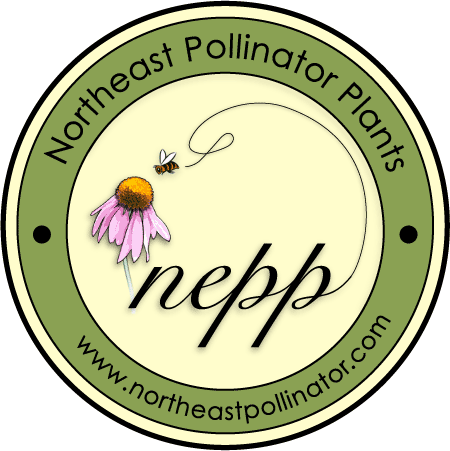 Logo for Northeast Pollinator Plants