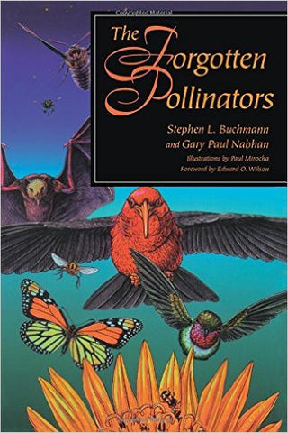 The Forgotten Pollinators bookcover