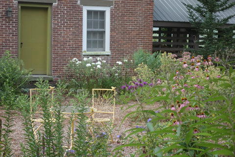 Create places for humans to observe the pollinators in action