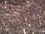 If you have mulched your pollinator garden, you will likely need to put a fresh layer of mulch the first couple years, until the plants have truly filled in.