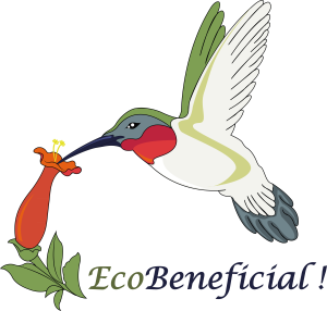 EcoBeneficial! links