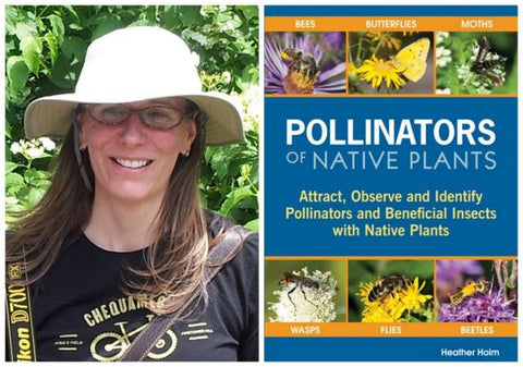 Pollinators of Native Plants bookcover