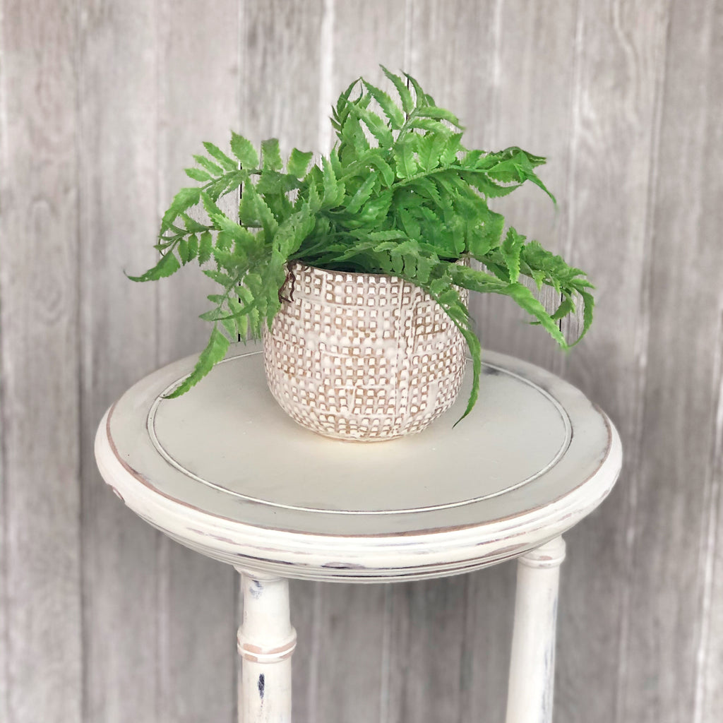 Faux Lady Fern Plant LOCAL ONLY