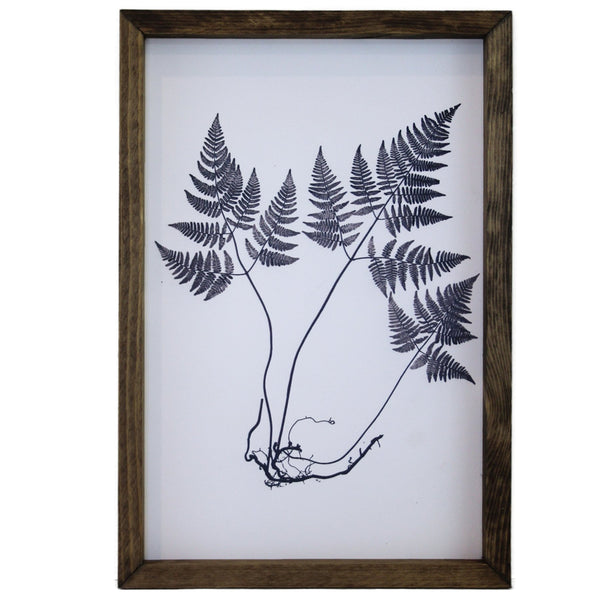 Blue Fern Framed Art #1 LOCAL ONLY