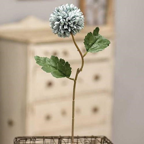 Pale Blue Chrysanthemum Stem